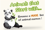 logo animals that start with r